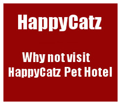 To visit Happy Catz website Click HERE